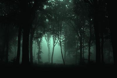 Gloomy_Forest.jpg